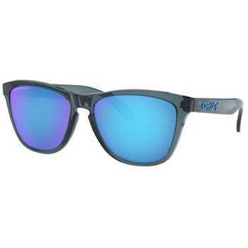 Oakley Frogskins Polarized Sunglasses Accessories